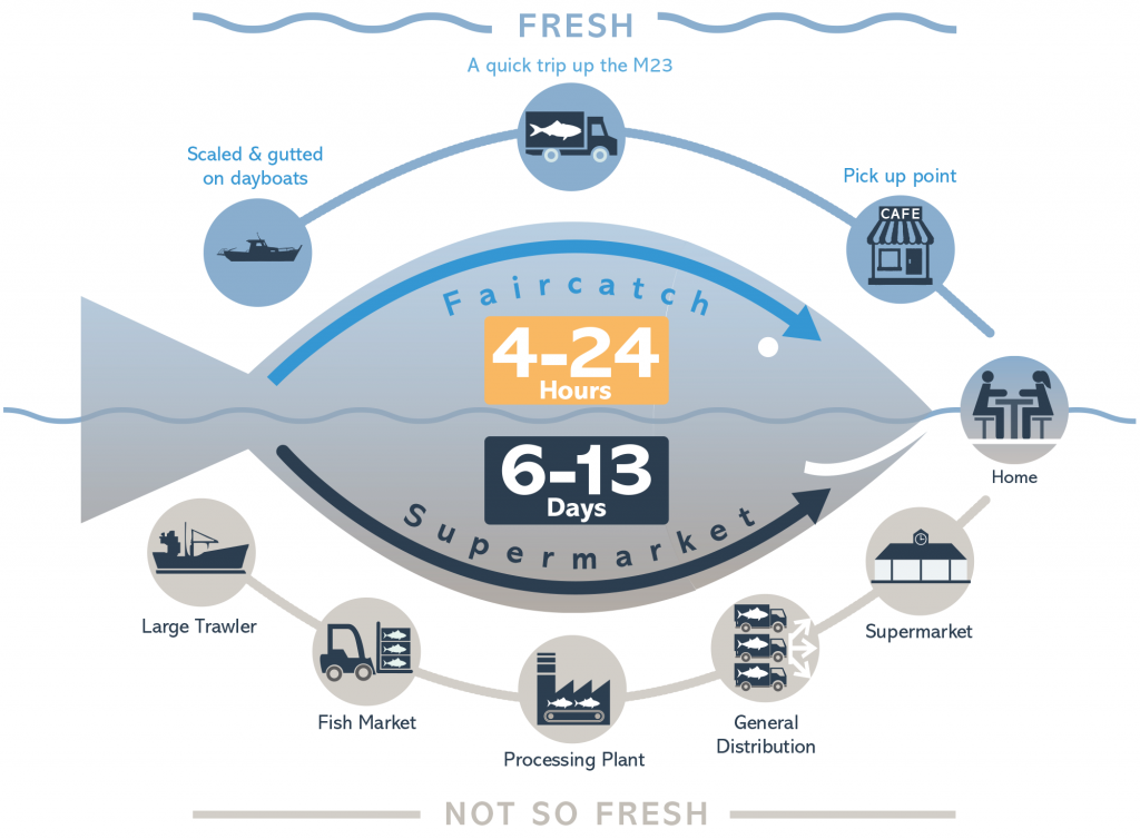 faircatch infographic