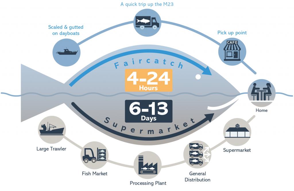 faircatch infographic