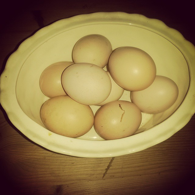 Castle Farm Eggs